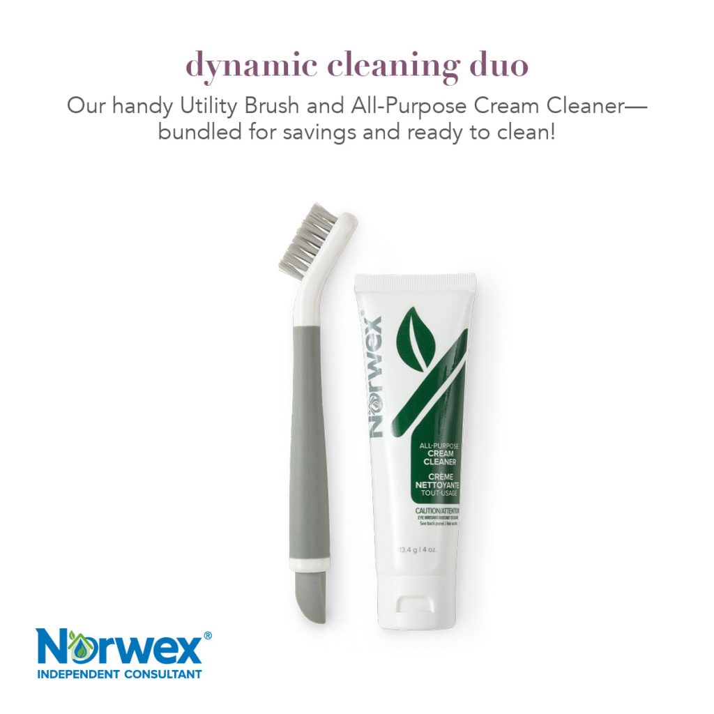 Norwex Cleaning Duo